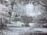 2011-02-24 snow 018